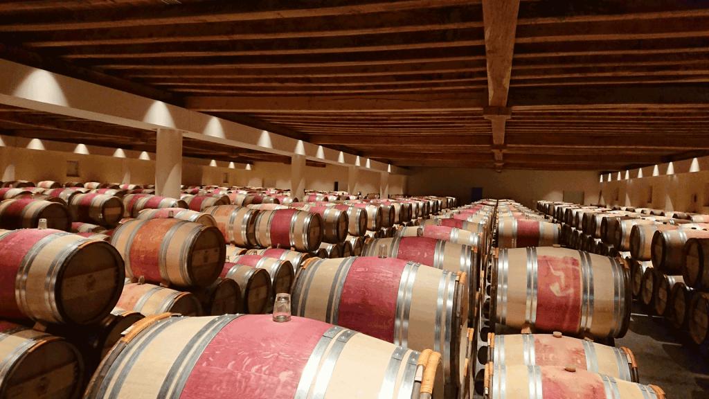 Chais à barriques Château Gruaud Larose